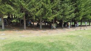 林に囲まれた展示場「岩合光昭の写真展」開催中