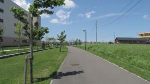 東雁来やすらぎ緑道
