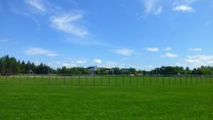 野球場とリラックスプラザ
