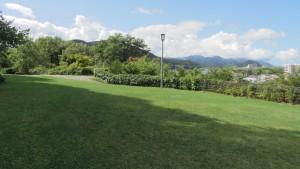 天神山緑地(展望広場)
