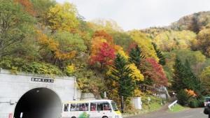 トンネルと電気バスと紅葉