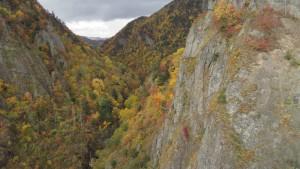 ダム下流部の紅葉