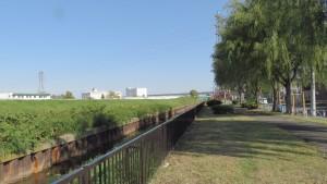 米里川と米里川緑地
