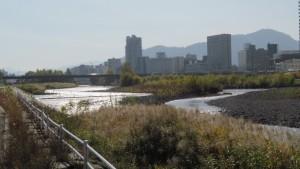 豊平川から南大橋と藻岩山を望む