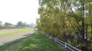 サイクリングロードと河畔林の紅葉