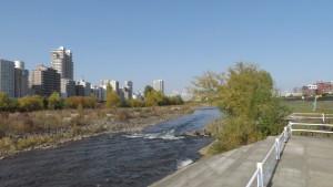 豊平川の下流とビル群を望む