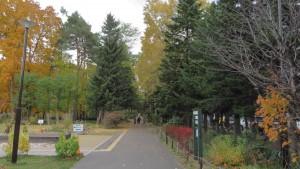 散策路の紅葉