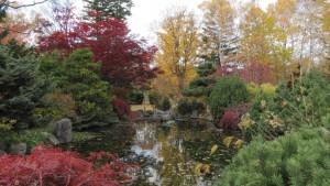 池の周りの紅葉