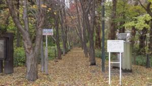 屯田防風林入口