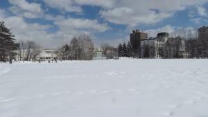 雪の緑ヶ丘公園