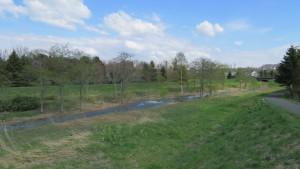 緑地内を流れる星置川