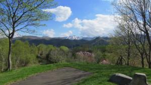 見晴らし山から見たサクラと手稲山