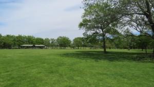 芝生広場とあずまや