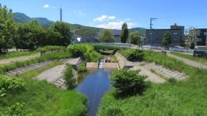 三樽別川上流を望む