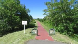 中の川緑地 散策路