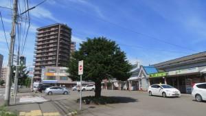 JR苗穂駅とイチイの木