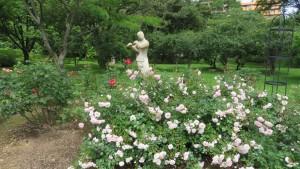 バラと野外彫刻「笛を吹く少女」