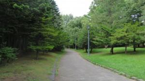 天神山緑地の散策路