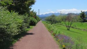 旧中の川緑地の散策路