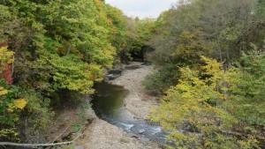 真駒内川の紅葉