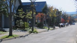 しんえい四季のまちの街並み