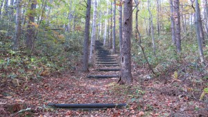 階段の散策路