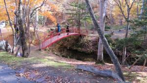 亀が池と赤い太鼓橋