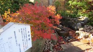 水琴窟とドウダンツツジの紅葉