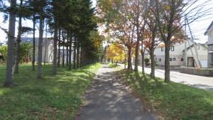 あいの里大学前緑道