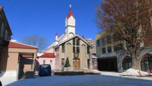 カトリック北一条教会聖堂とケヤキの巨木