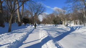 雪のキャンパス中央道路