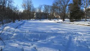 雪の大野池