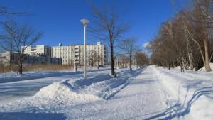 雪のキャンパス道路と研究棟群