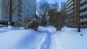 雪の北4条通(ミニ大通)