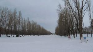 雪に覆われたカナール