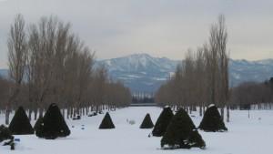 雪のカナールから見る手稲山