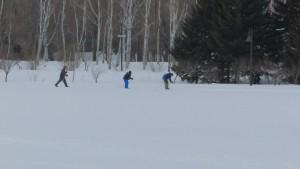 スキーコースを進むスキーヤー