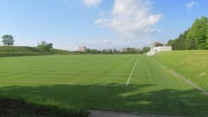 天然芝サッカー練習場