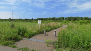 茨戸川緑地「植樹の森」入口