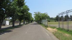 札幌恵庭自転車道と厚別南公園