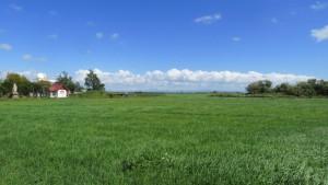 牧草地と福移神社