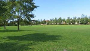 多目的芝生広場