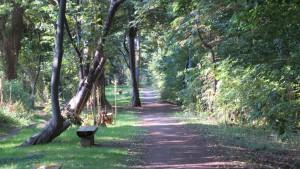 屯田防風林と散策路