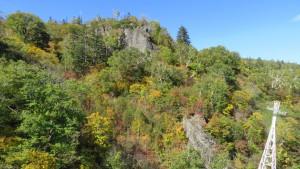 岩壁と紅葉