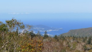 小樽港を望む