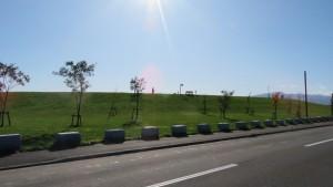 市道烈々布区界通線から丘珠空港緑地を望む