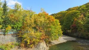 玉川橋から豊平川下流の紅葉を望む