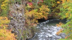 時雨橋から白井川下流の紅葉を望む