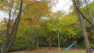 定山渓岩戸公園の紅葉