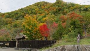 「心の里 定山」と紅葉